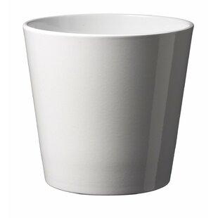 Dallas Clay Pot Planter