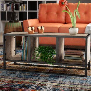 Williston Forge Hollie Coffee Table with Storage Shelf