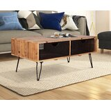 Fong Coffee Table with Storage by 17 Stories