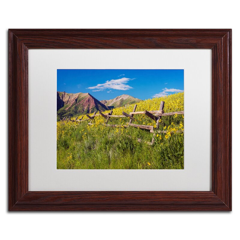Trademark Art Wood Fence Framed Photographic Print On Canvas Wayfair