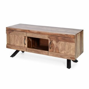 Guillermo TV Stand For TVs Up To 60
