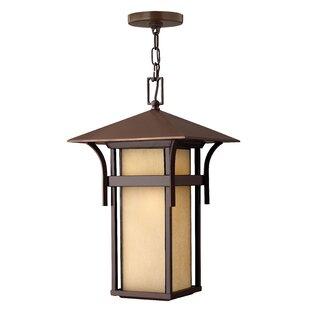 Hinkley Lighting Harbor 1-Light Outdoor Hanging Lantern