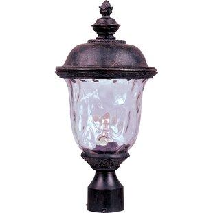 Patidar Outdoor 1-Light Lantern Head by Astoria Grand