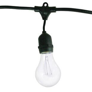 Imelda 48 ft. 15-Light Standard String Light by Birch Lane? Heritage