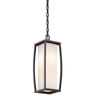 Winston Porter Roumfort 2-Light Outdoor Pendant