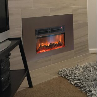 Lipman True Flame Wall Mounted Electric Fireplace Insert by Latitude Run