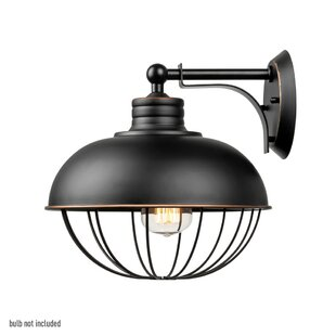 Williston Forge Quarles 1-Light Barn Light