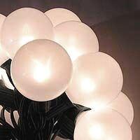 Vickerman 15 Globe Christmas Light