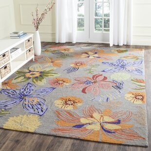 Hayes Hand-Hooked Grey/Orange Indoor/Outdoor Area Rug