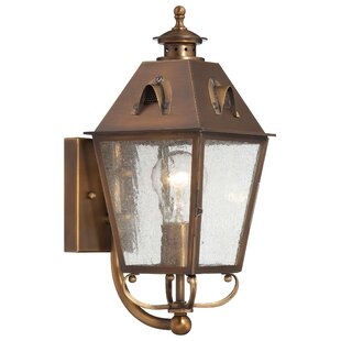 Best Review Meriline 1-Light Outdoor Sconce By Darby Home Co
