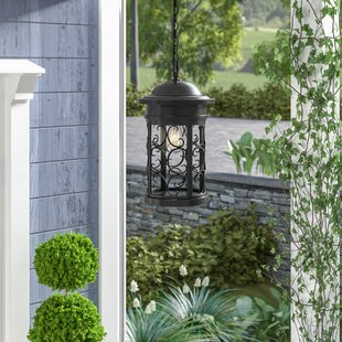 Cole 1-Light Outdoor Hanging Lantern by Darby Home Co