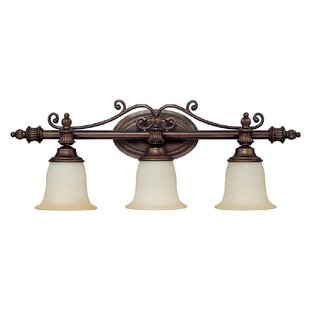 Great Price By ard 3-Light Vanity Light By Fleur De Lis Living