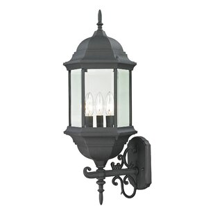 Dipaolo 3-Light Outdoor Wall Lantern