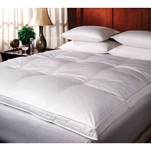 Comparison Luxury 2 Feathers Mattress Topper By Alwyn Home