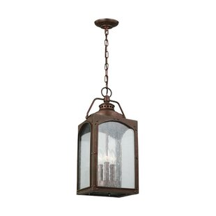 Newlon 3-Light Outdoor Hanging Lantern