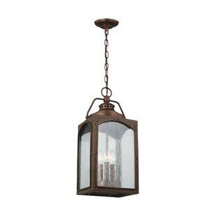 Newlon 3-Light Outdoor Hanging Lantern