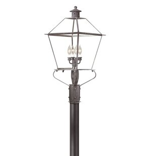 Theodore Contemporary 4-Light 60W Lantern Head by Darby Home Co