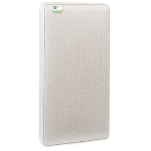 FlexCool AirLight 2-Stage 5.75 Crib and Toddler Bed Mattress by Sealy
