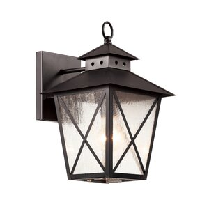TransGlobe Lighting Chimney Vented 1-Light Outdoor Wall Lantern