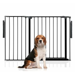 Bentham Wall Mounted Pet Gate by Archie & Oscar
