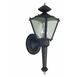 Charlton Home Hiett Outdoor Sconce