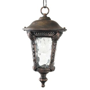 Wurthing 1-Light Outdoor Hanging Lantern