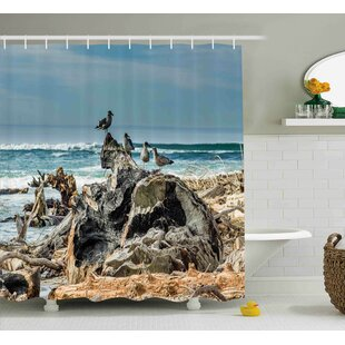 Velma a Raft of Driftwood on The Shore Seagulls Wavy Sea and The Sky Digital Image Single Shower Curtain