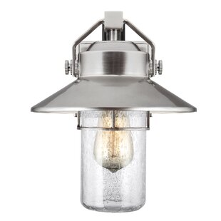 Tolliver 1-Light Outdoor Barn Light