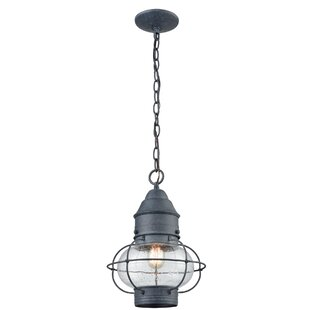 Robillard 1-Light Outdoor Pendant