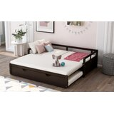Breiden Twin Daybed with Trundle by Latitude Run®