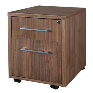 Hilburn 2-Drawer Mobile Vertical Filing Cabinet