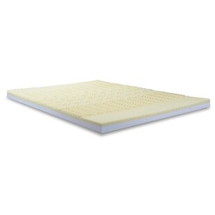Convoluted Foam Combination Mattress Topper by Alwyn Home 2019 Sale