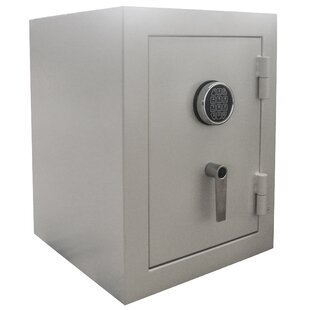Pro-Series Buffalo Outdoor Security Safe with Electronic Lock