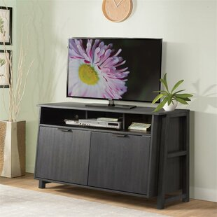 Tattnall TV Stand by Greyleigh Coupon