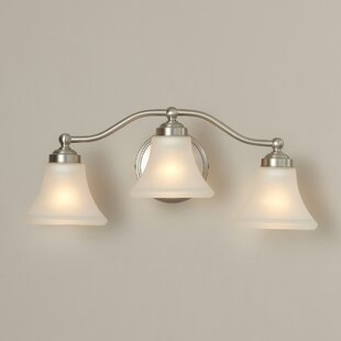 Palermo 3-Light Vanity Light by Darby Home Co