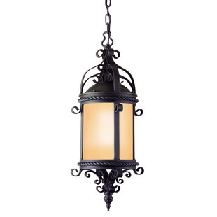 Theodore 1-Light Outdoor Hanging Lantern