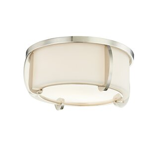 Brayden Studio Tamesbury 2-Light Flush Mount