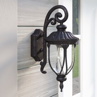 Fleur De Lis Living Angie 1-Light Outdoor Wall Lantern