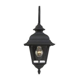 Hartnett 1-Light Outdoor Wall Lantern by Alcott Hill