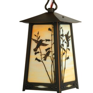 Order Devaughn 1-Light Outdoor Hanging Lantern By August Grove