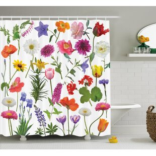 Mckinney Types of Flowers Colored Roses Tulips Daisies Hydrangeas Lilacs Artwork Print Single Shower Curtain