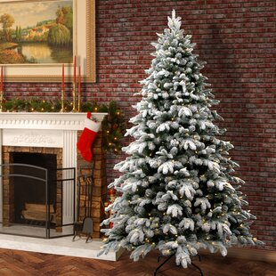 christmas trees you ll love wayfair