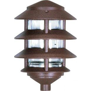 Aslan Outdoor 1-Light 100W Lantern Head by Bloomsbury Market