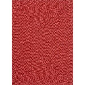 Goodrich Hand Woven Red Indoor/Outdoor Area Rug
