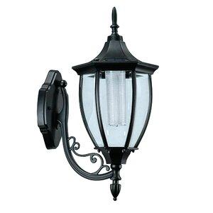 Beech 1-Light Outdoor Wall Lantern