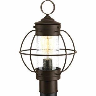 Nayeli 1-Light Lantern Head by Breakwater Bay