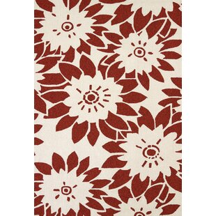 Baillargeon Atrium Handmade Red Indoor/Outdoor Area Rug