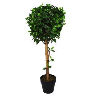 Artificial Ficus Ball Tree