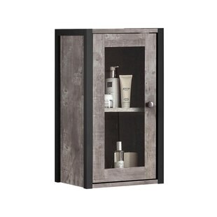 Hunter 33cm X 60cm Wall Mounted Cabinet By Williston Forge