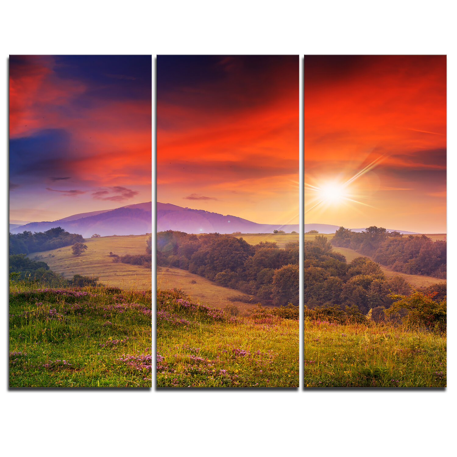 Designart Cold Morning Fog With Red Hot Sun 3 Piece Graphic Art On Wrapped Canvas Set Wayfair